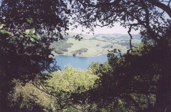 Featured photo for Bear Creek Reservoir, CA