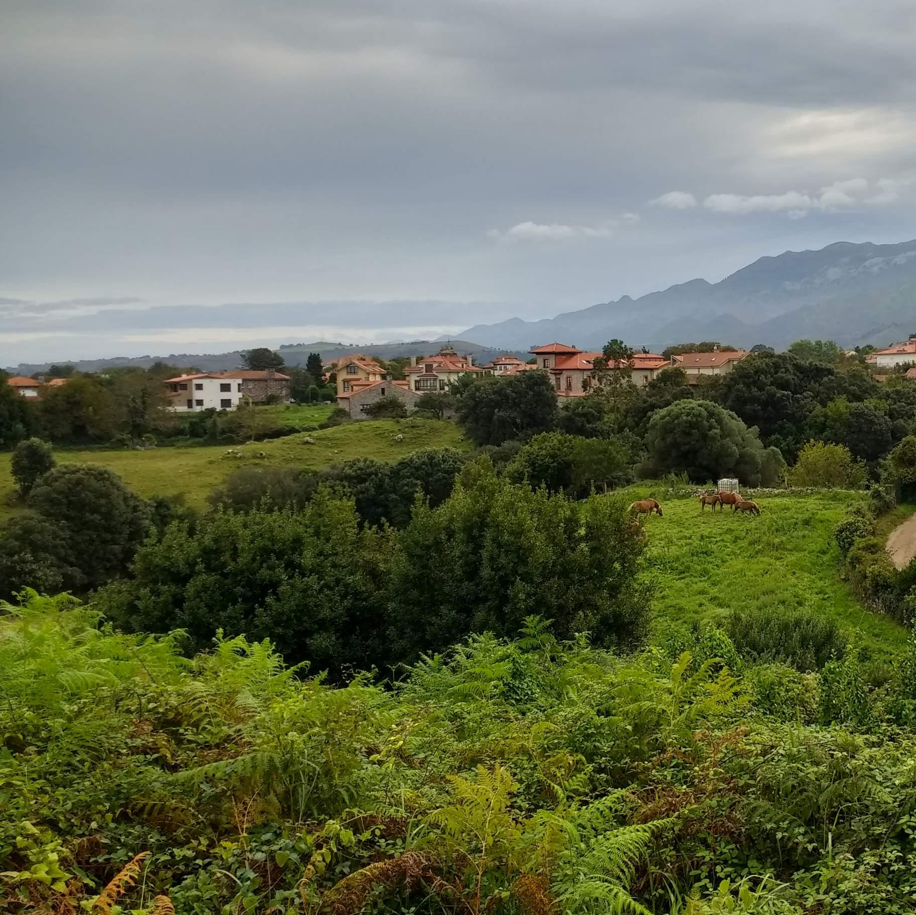 Featured photo for Camino de Santiago Days 7-11 (Del Norte)