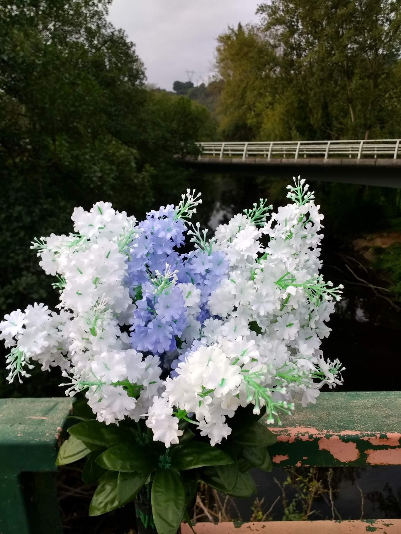 Camino de santiago days 12 17 primitivo beautiful flowers on a bridge in gallegos spain izmirmasajfo