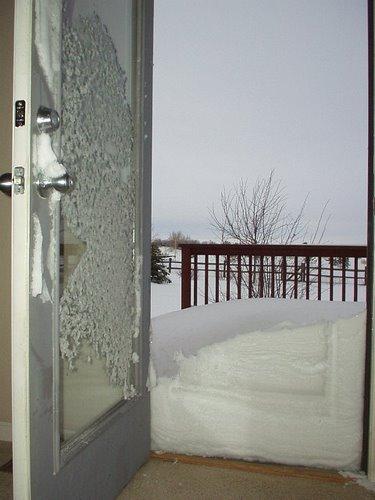 Featured photo for Colorado Blizzard