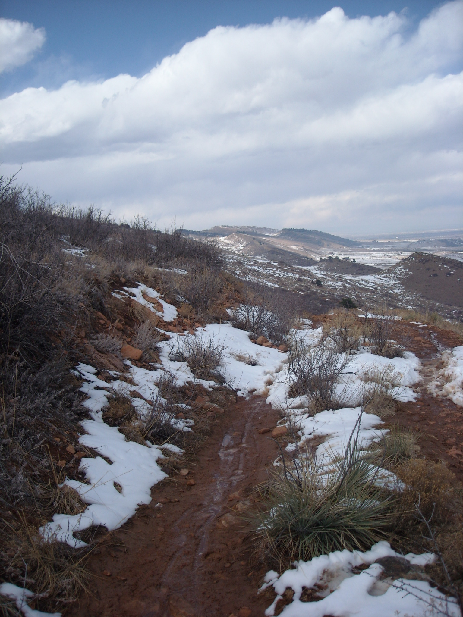 Featured photo for Coyote Ridge, CO