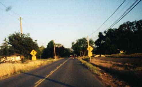 flat road, road signs with curves, near Davis, California