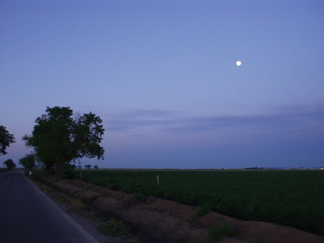Featured photo for Davis 400km Brevet, CA