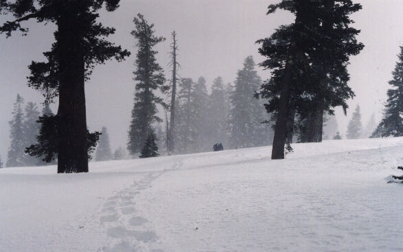 Featured photo for Echo Pass, CA
