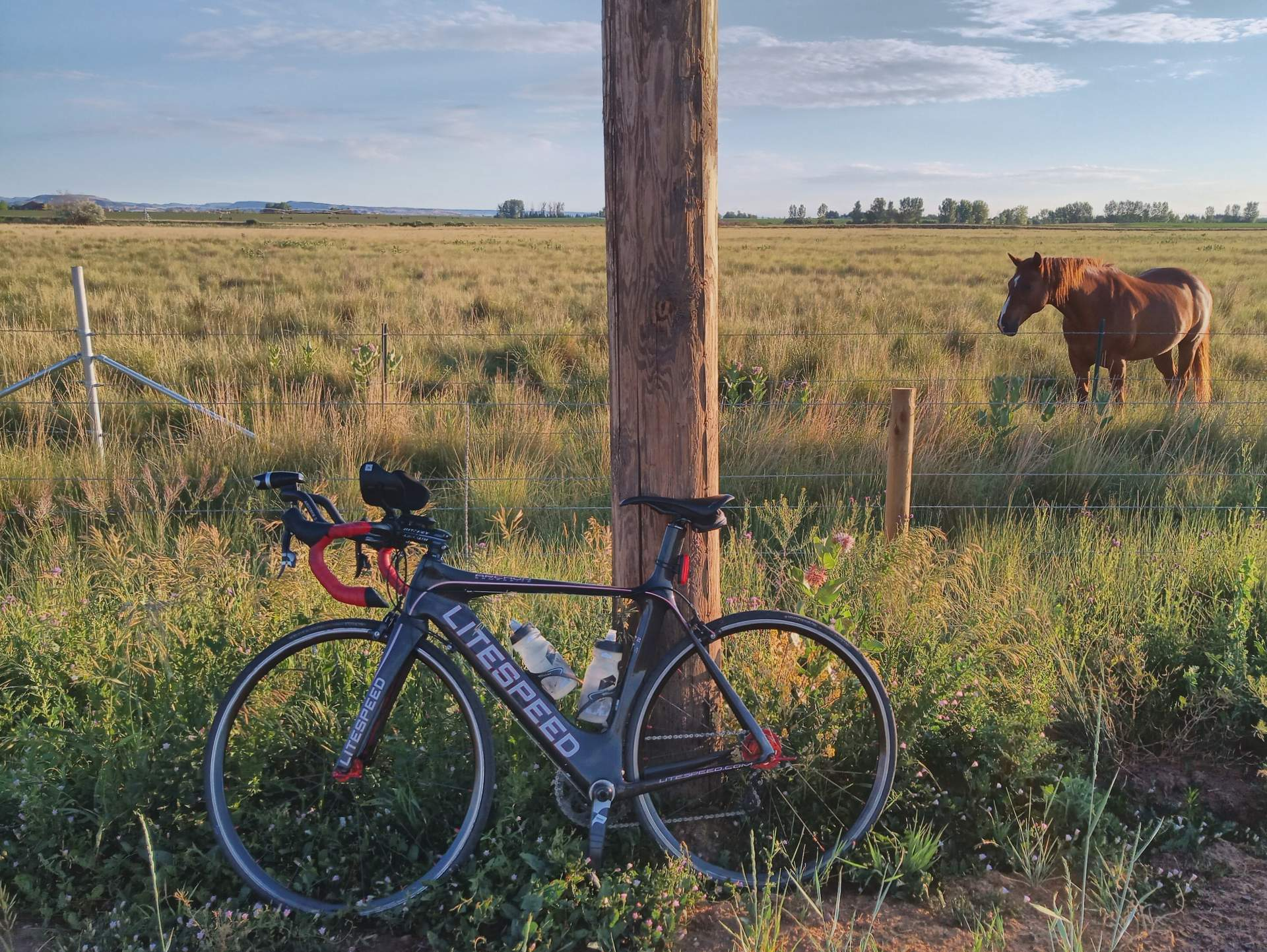 Featured photo for Birthday Ride: Fort Collins Flatlands 200
