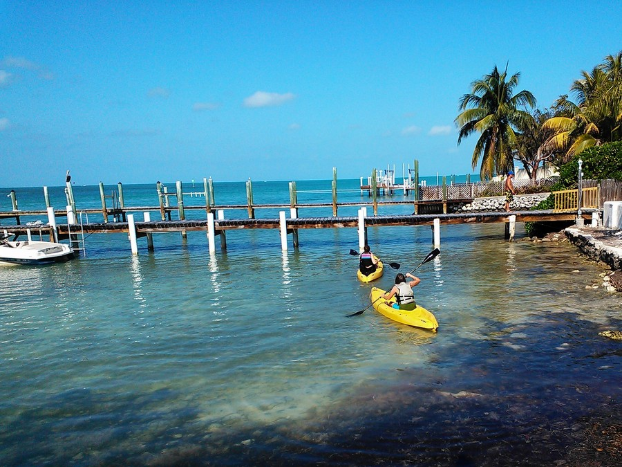 Florida Keys Kayaks And Eco Tours