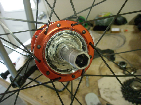 How to Quiet a Noisy Freehub