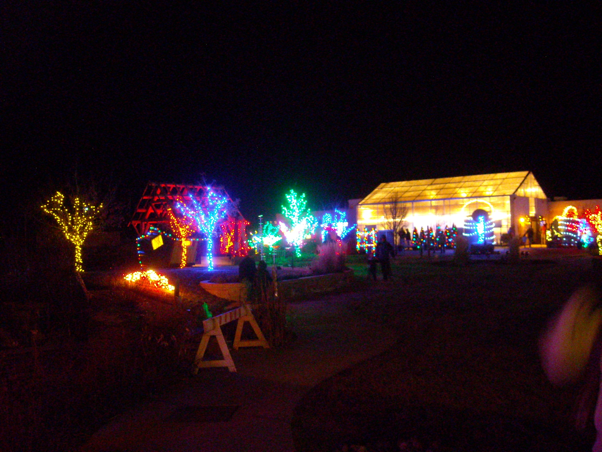 Featured photo for Garden of Lights