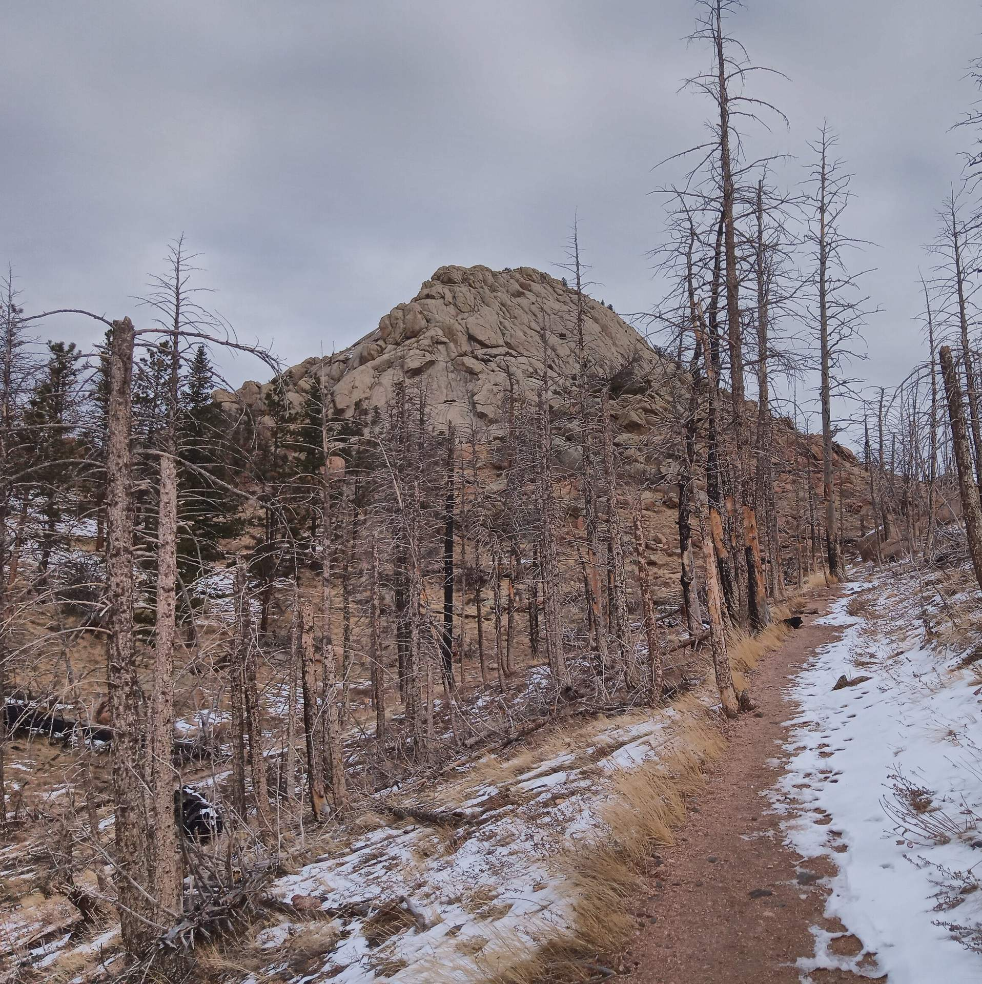 Featured photo for New Year's Hike/Run at Grey Rock
