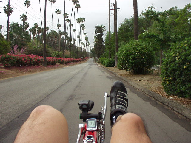 [Mile 36, 7:51 a.m.] Now for the most beautiful part of the ride (in my opinion): going through Arlington Heights in Riverside.  This is how it looks like from the seat of a recumbent; never mind my hairy legs...