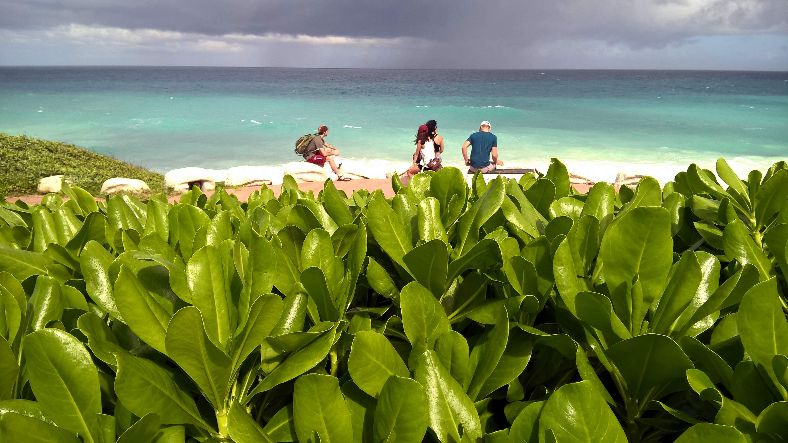 Featured photo for Isla Mujeres