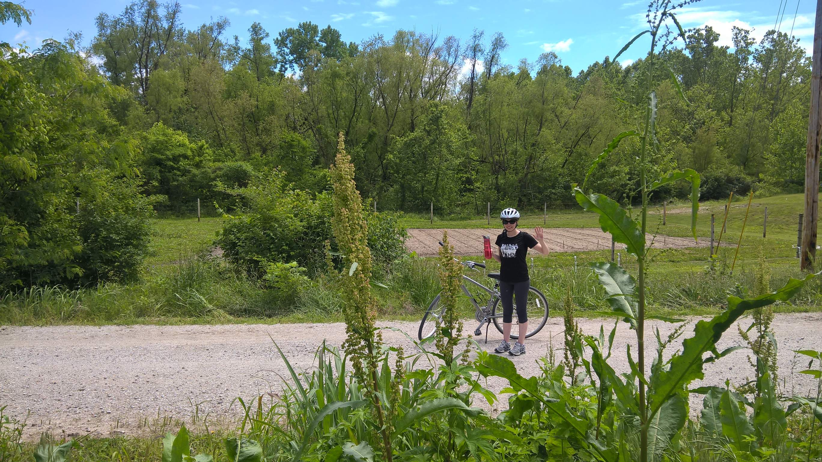 Featured photo for Running and Biking the Katy Trail, Missouri