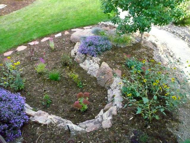 Featured photo for Best Plants for Fort Collins