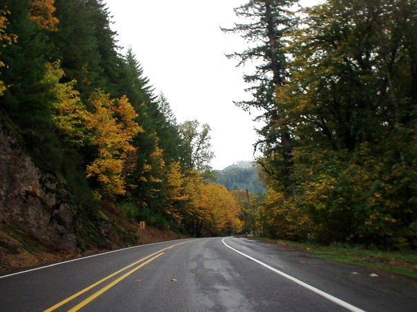 Featured photo for McKenzie Highway, OR