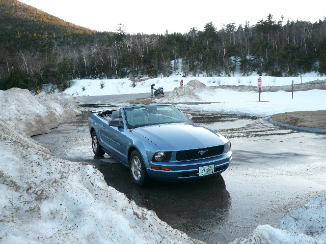 Featured photo for Ode to the Pony Car