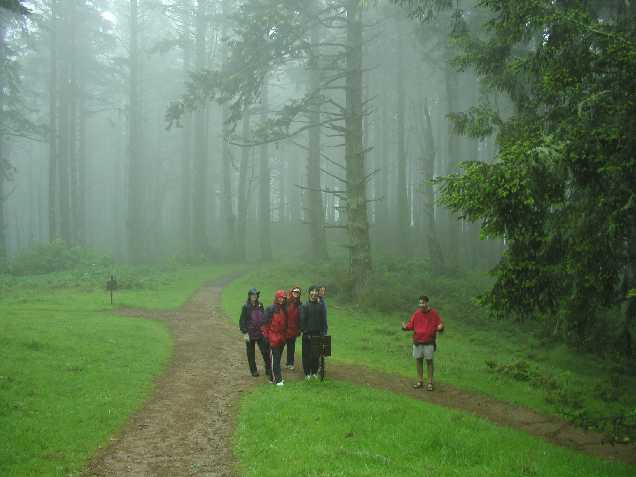 Featured photo for Point Reyes, CA