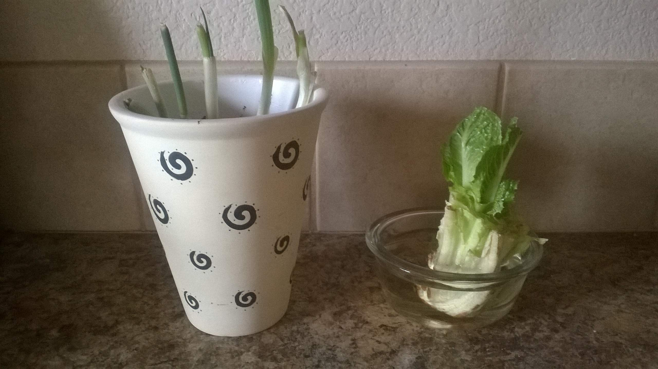 Regrowing green onions and romaine lettuce is as simple as plopping their bases (after eating their tops) in water.  Dirt can optionally be used for the green onions.
