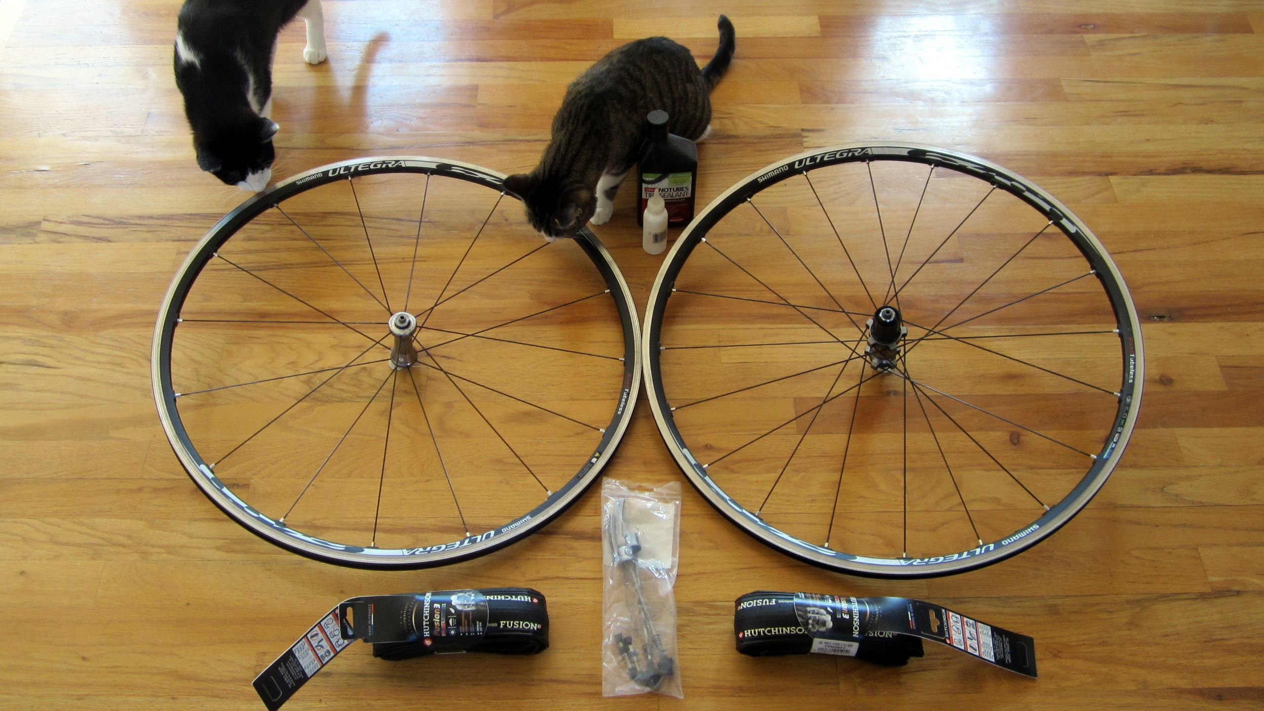 All the equipment needed to go to tubeless road tires: tubeless-ready wheels, tubeless tires (Hutchinson Fusion 3), and optional sealant (Stan's NoTubes). Curious kitties not included.