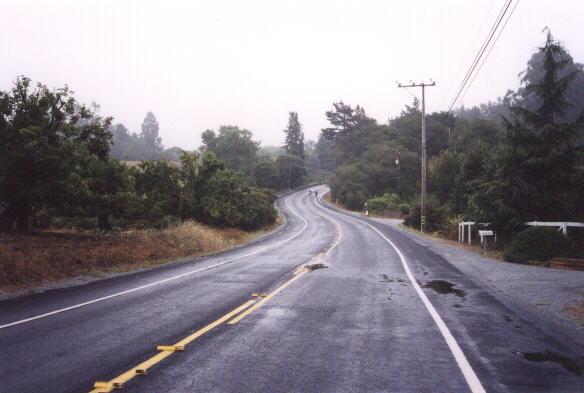 Featured photo for Santa Cruz Mountain Challenge