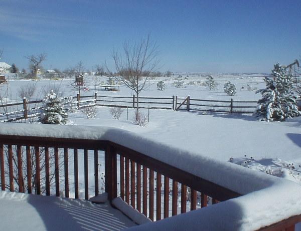 snow1106-1.jpg