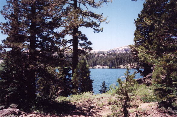 Featured photo for Tahoe Rim Trail, CA