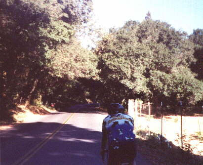 Featured photo for Tour de Napa Valley