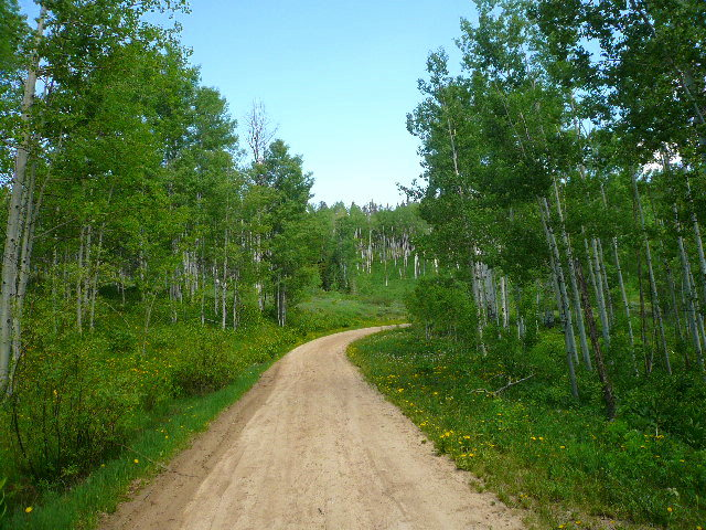 Featured photo for Tour Divide: Day 16