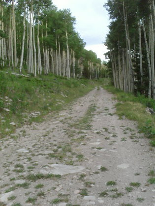 Featured photo for Tour Divide: Day 23