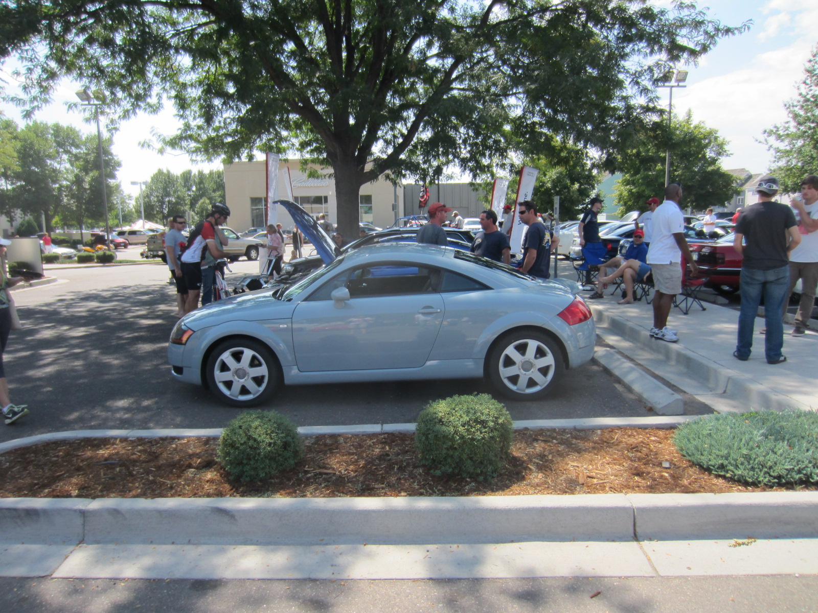 Featured photo for Ed Carroll Westfest Concours & Car Show