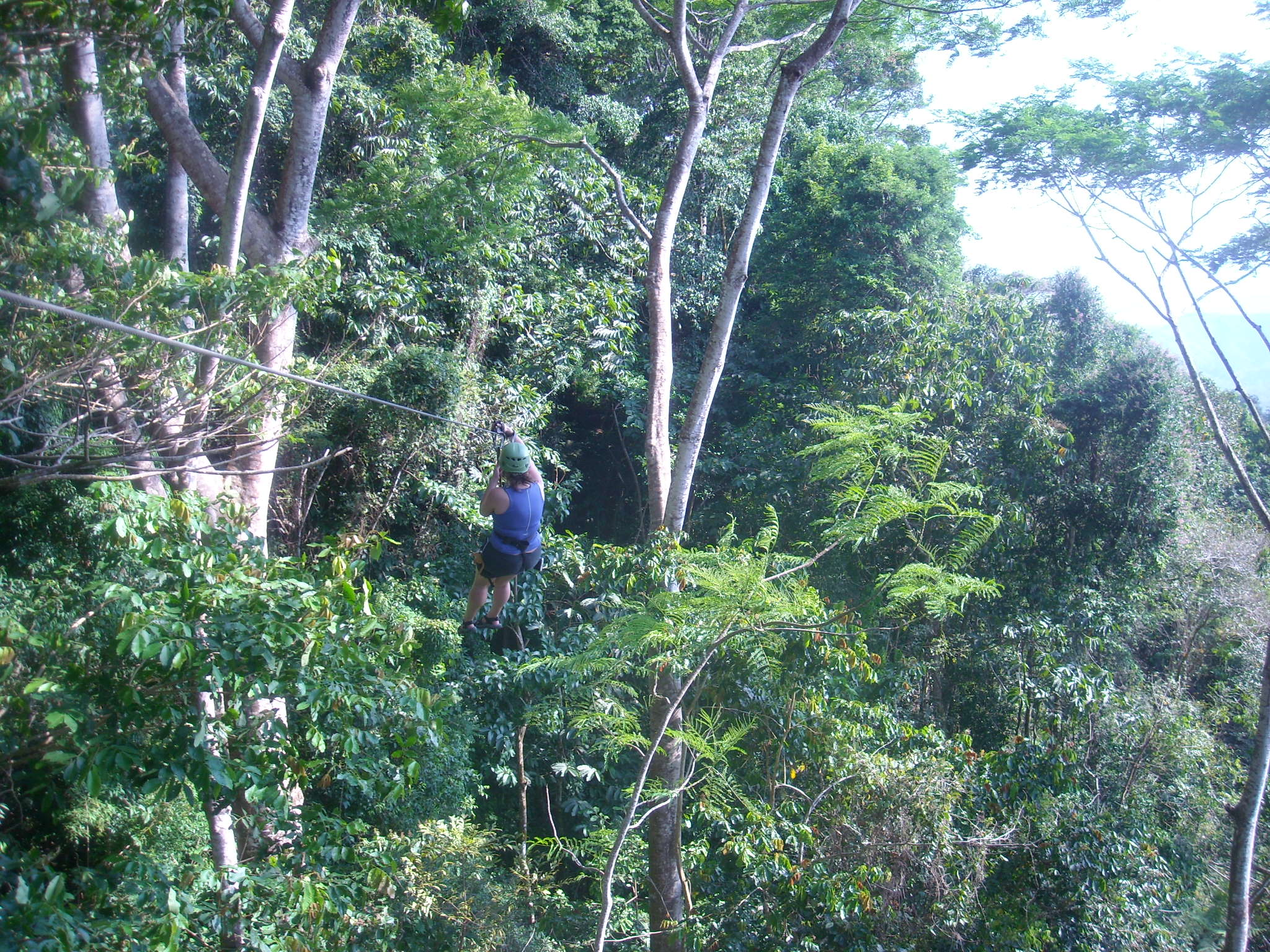 Featured photo for Zip-lining in Costa Rica