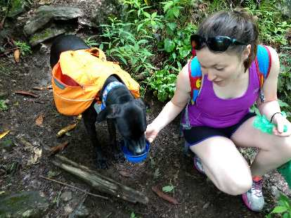 Maureen giving water to this dog we encountered named Teddy. Teddy and his mother were section-hiking the Appalachian Trail.