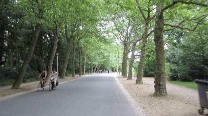 Beautiful tree-lined trail in Vondelpark.