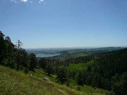 View of the Horsetooth Reservoir and Ponderosa Pine forests below.