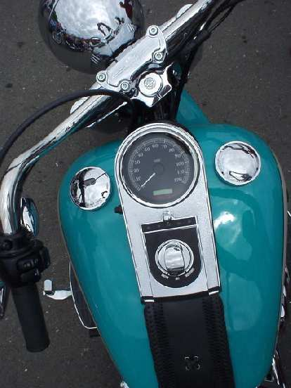 Gas tank detail of the Harley.