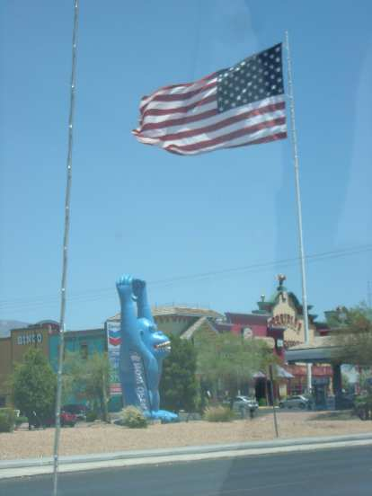 Monkey and flag in Pahrump, NV.