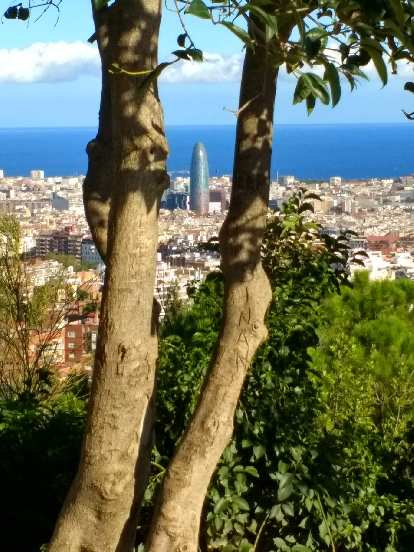 Torre Agbar as seen through trees from Park Güell in Barcelona, Spain, with the Balearic Sea in the backdrop.