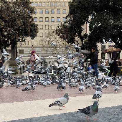 There were hundreds of pigeons at the Plaza de Catalunya because people were throwing bread crumbs.