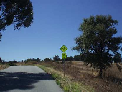 [Mile 118, 2:51 p.m.] Oh, the heat!  That combined with some climbing on Arastradero road, and I was slowly-but-steadily beginning to crack...