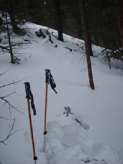Ski poles in the snow.