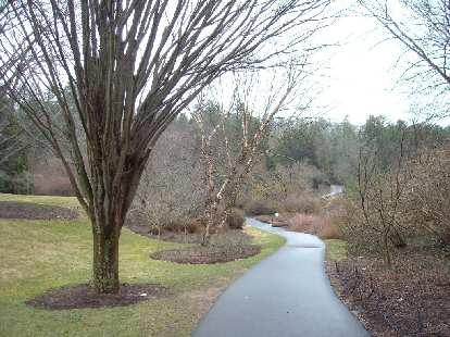 Walking trail outside the Bilmore House.