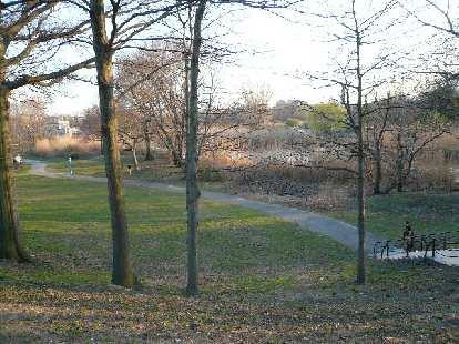 Back Bay Fens Park.