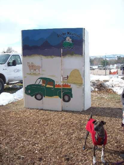 Quita had no interest in green trucks.