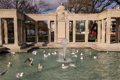 Ducks in a fountain in central Brighton and Cove.