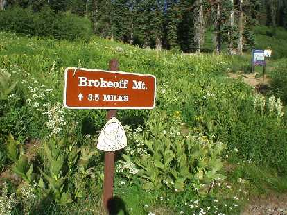 Brokeoff Mountain is the highest peak in Tehama County at 9285' and is just inside the Lassen Volcanic National Forest.  The hike is 3.5 miles to the top (2600' up) from the trailhead and starts through s