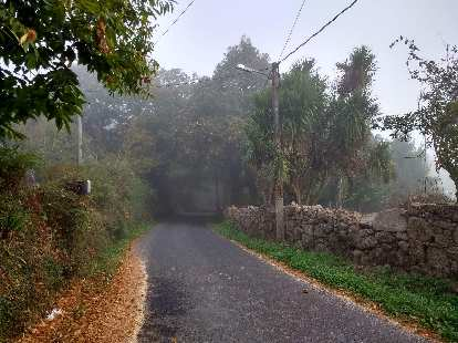 Foggy morning on the Camino de Fisterra.