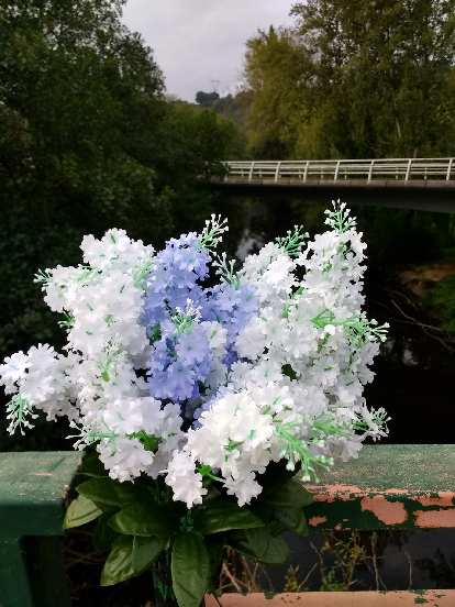 Beautiful flowers on a bridge in Gallegos, Spain.