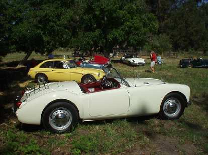 There was a good diversity of British sports cars at the Ardenwood Celtic Festival, including this MGA, MG B/GT, 2 MG TDs, my MGB, a Jaguar E-Type, and a Morgan.
