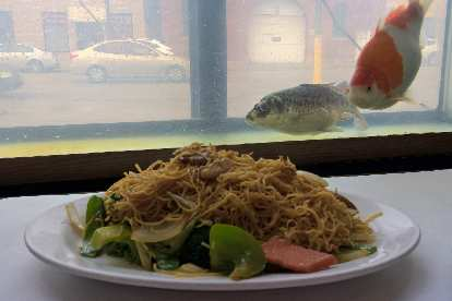 A plate of lo mein in front of live fish inside the Grand Palace restaurant in Chinatown of Chicago.