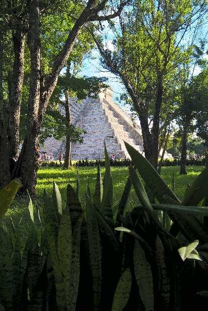 El Castillo, trees, green plants