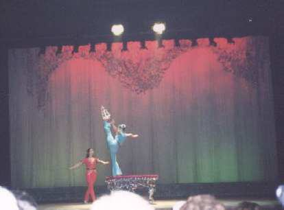 Another acrobatic show!